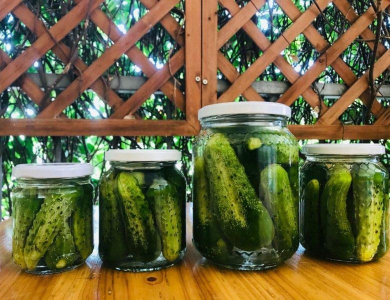 7-8 settembre Due giorni di fermentazione alla Cibofficina Viterbo
